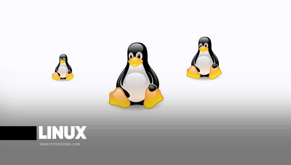 Pros and Cons of Linux Operating System