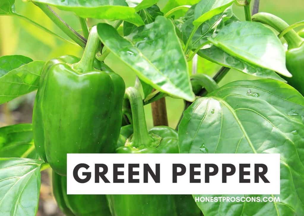 Benefits of Green Pepper