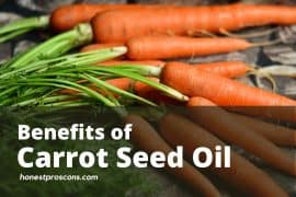 Benefits of Carrot Seed Oil