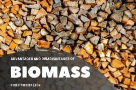 Advantages and Disadvantages of Biomass